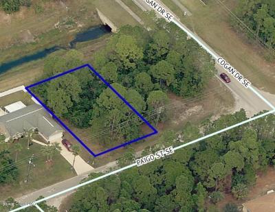 Residential Lots & Land For Sale: 687 Paigo Street SE