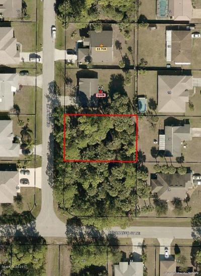 Brevard County Residential Lots & Land For Sale: 413 Cellini Avenue NE