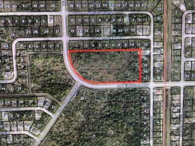 Brevard County Residential Lots & Land For Sale: Degroodt/San Filippo Dr