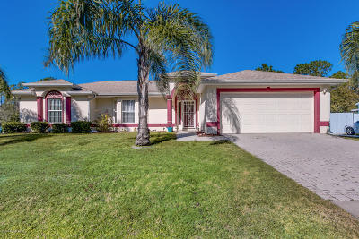 Palm Bay Single Family Home For Sale: 1089 Siboney Street NW