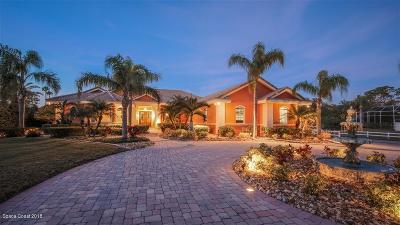 Brevard County Single Family Home For Sale: 3140 Celina Lane