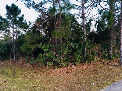 Brevard County Residential Lots & Land For Sale: 195 Franzing Street SW