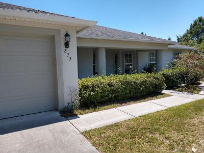 Palm Bay Single Family Home For Sale: 875 Emden Avenue NW