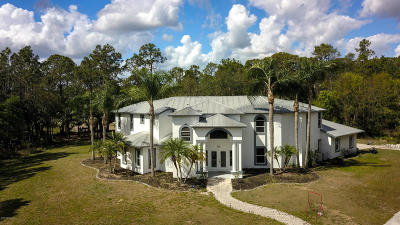 Brevard County Single Family Home For Sale: 5070 Junedale Drive