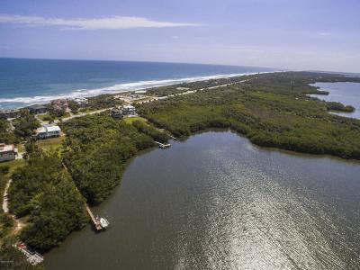 Melbourne Beach Single Family Home For Sale: 8336 S Highway A1a