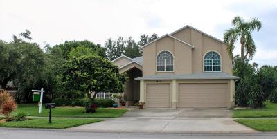 Merritt Island Single Family Home For Sale: 3890 Savannahs Trl