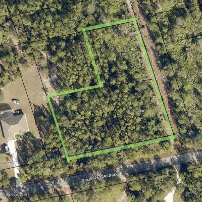 Mims Residential Lots & Land For Sale: Golden Shores Boulevard