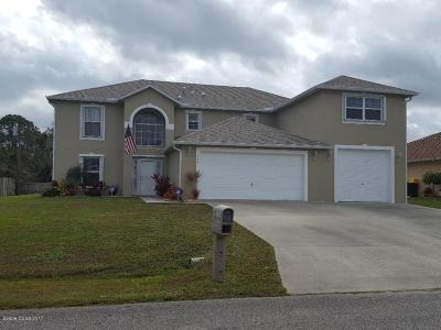 Palm Bay Single Family Home For Sale: 1794 Taymouth Street NW