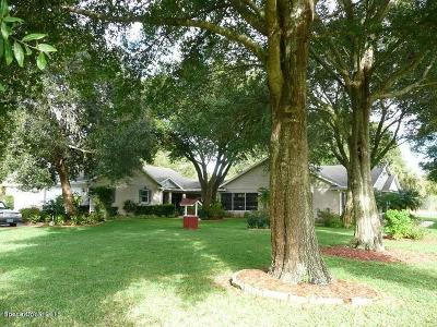 Mims Single Family Home For Sale: 2275 N Singleton Avenue