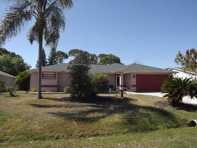 Palm Bay Single Family Home For Sale: 527 Sauders Road SE