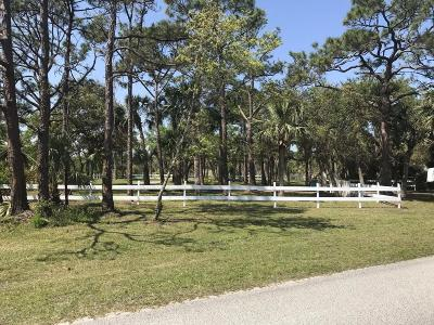 Grant Single Family Home For Sale: 3900 Captain Morgan's Lane