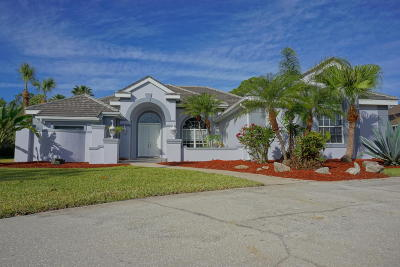 Single Family Home For Sale: 4051 Snowy Egret Drive
