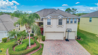 Palm Bay Single Family Home For Sale: 376 Broyles Drive SE