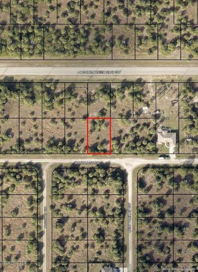 Brevard County Residential Lots & Land For Sale: 701 Banyan Street SW