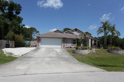 Palm Bay Single Family Home For Sale: 1411 Hero Street SE