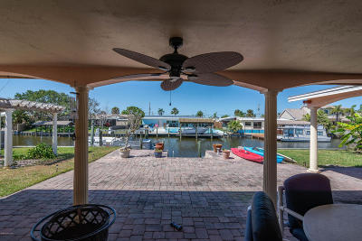 Brevard County Single Family Home For Sale: 441 Penguin Drive