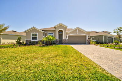 Brevard County Single Family Home For Sale: 7467 Bluemink Lane