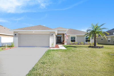 Palm Bay Single Family Home For Sale: 217 Paquita Circle SW
