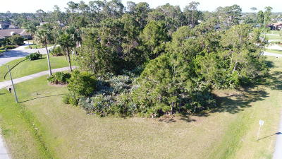 Residential Lots & Land For Sale: Eagle Nest Court