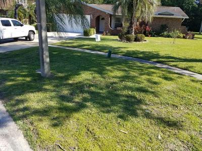 Palm Bay Single Family Home For Sale: 1216 NE Cimarron Circle NE