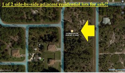 Brevard County Residential Lots & Land For Sale: 715 Giblin Avenue SW