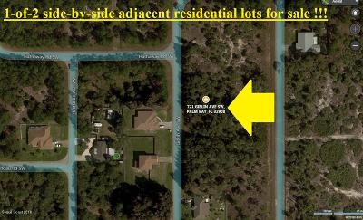 Brevard County Residential Lots & Land For Sale: 721 Giblin Avenue SW