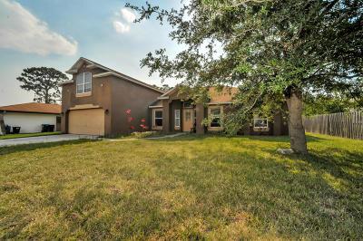 Palm Bay Single Family Home For Sale: 460 Charlotta Avenue SE