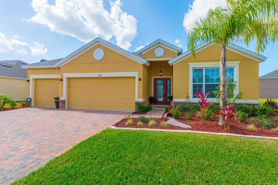 Brevard County Single Family Home For Sale: 2310 Nutmeg Lane SE
