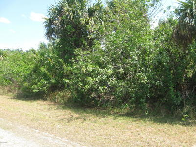 Brevard County Residential Lots & Land For Sale: 724 Parrotfish Street SW