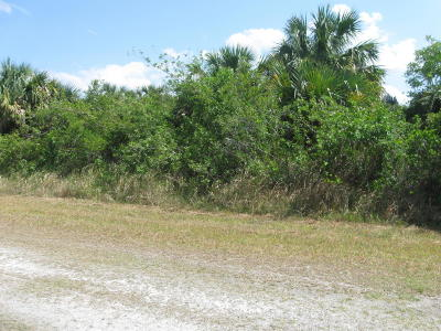 Brevard County Residential Lots & Land For Sale: 740 Parrotfish Street SW