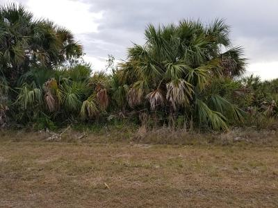 Brevard County Residential Lots & Land For Sale: 3278 Sparrow Avenue SW