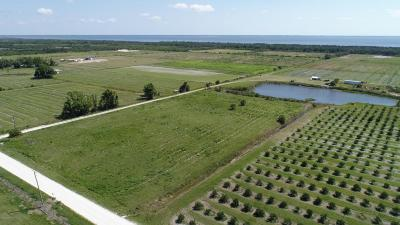 Brevard County Residential Lots & Land For Sale: 4375 Dixie Way