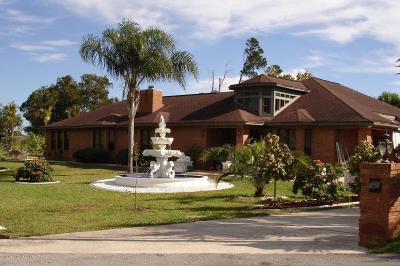 Titusville Single Family Home For Sale: 3717 Chiara Drive