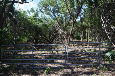 Merritt Island Residential Lots & Land For Sale: 305 E Hall Road