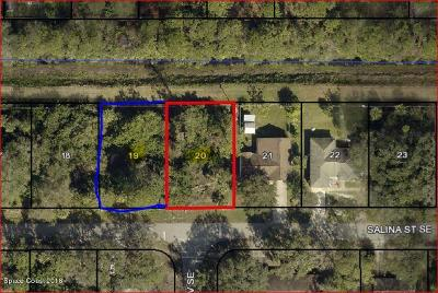 Palm Bay Residential Lots & Land For Sale: 1001 Salina Street SE