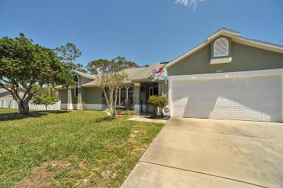 Palm Bay Single Family Home For Sale: 1873 Salida Street NW