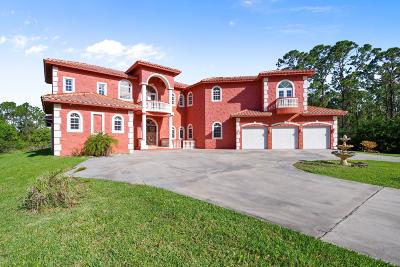 Palm Bay Single Family Home For Sale: 1620 Henley Road NW