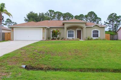 Palm Bay Single Family Home For Sale: 1714 Wake Forest Road NW
