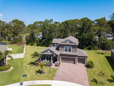 Palm Shores Single Family Home For Sale: 2442 Okalani Street