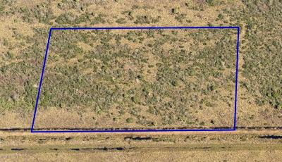 Titusville Residential Lots & Land For Sale: Titusville Fruit And Farm Land