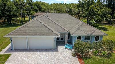 Merritt Island Single Family Home For Sale: 2235 Chase Hammock Road