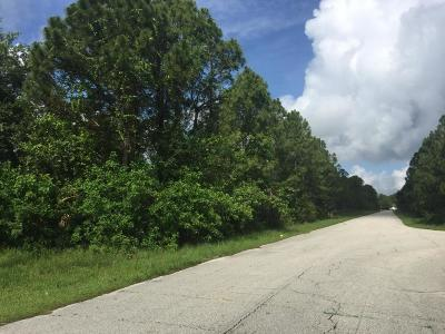 Residential Lots & Land For Sale: Cocoa Street SE