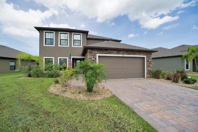 Single Family Home For Sale: 641 Dillard Drive SE