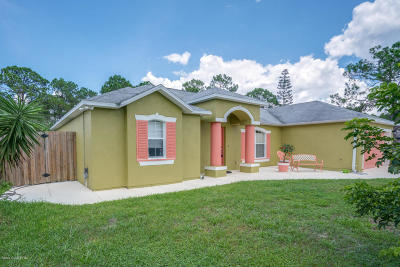 Palm Bay FL Single Family Home For Sale: $250,000
