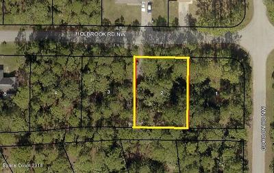 Brevard County Residential Lots & Land For Sale: 1614 Holbrook Road NW