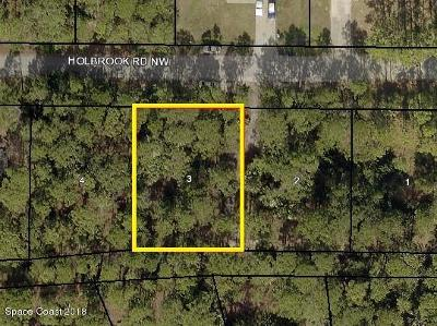 Brevard County Residential Lots & Land For Sale: 1626 Holbrook Road NW