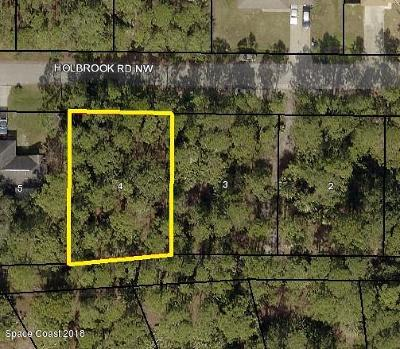 Brevard County Residential Lots & Land For Sale: 1638 Holbrook Road NW