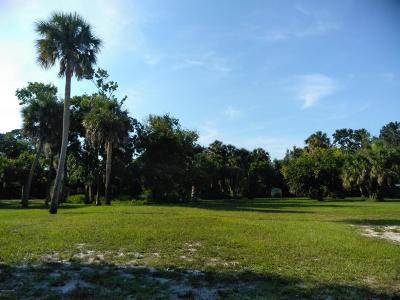 Cocoa Residential Lots & Land For Sale: xxx Peachtree Street