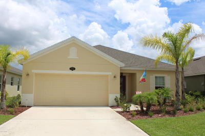 Palm Bay Single Family Home For Sale: 2359 Snapdragon Drive NW