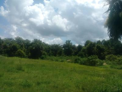 Titusville Residential Lots & Land For Sale: 4860 Barna Avenue